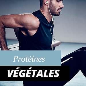 Protéines végétales: Avantages et Propriétés